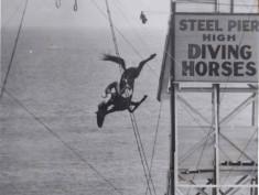 steel-pier-horse-diving-josephine-deangelis-1935-1941