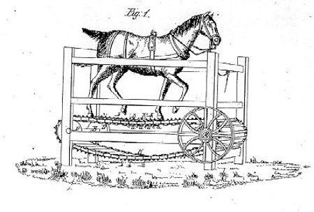 horse-treadmill-resized