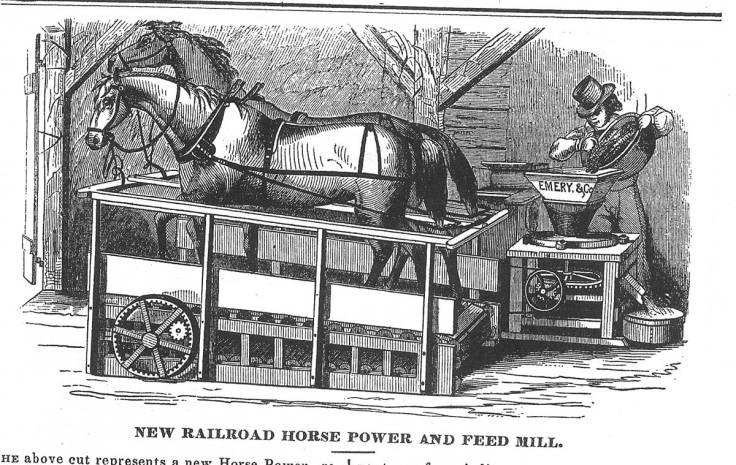 Horse_Treadmill