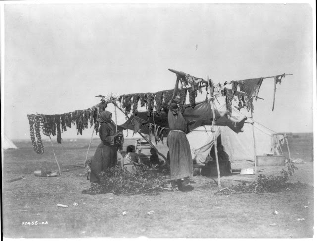 North American Indian Photographs, c (12)